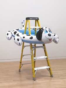 Dogpool Ladder