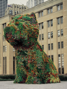 Jeff Koons. Puppy, Museum of Contemporary Art, Sydney, Australia, 1995-1996.