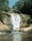 Waterfall (Dots) Origin